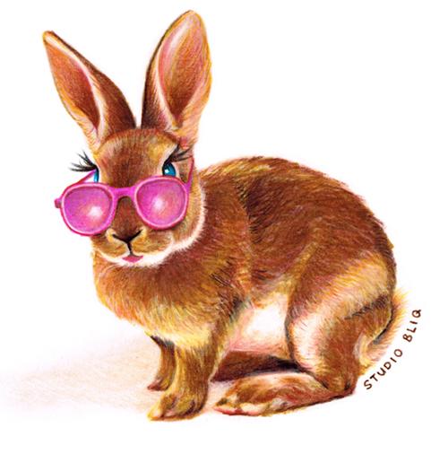 studio_bliq_illustratie_rabbit_konijn_zonnebril