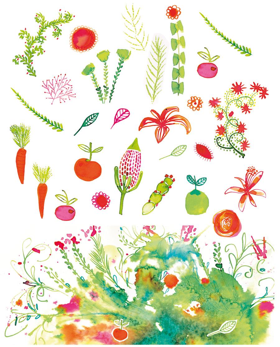 drawings_studio_bliq_flowers_bouquet